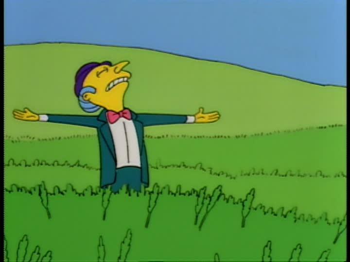 Mr. Burns Vast Fortune field simpsons